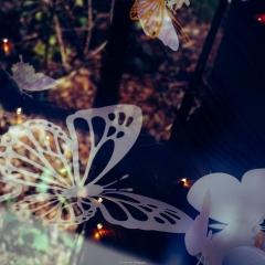 Marjorie-Pess-Leipers-Fork.thebutterfliesflutter