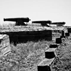 Rick-Borchert-Fort-Donelson