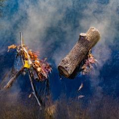 Duane Miller - Radnor Lake Outing