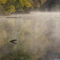 Ed Batsel - Radnor Lake Outing