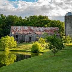 Diane-Burgett-Harlinsdale-Farm