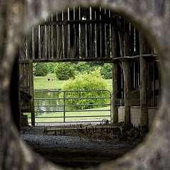Hartsdale-Farms-Peep-HoleHartsdale-Farms-Through-the-Hole