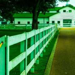 Jim-Havens-Harlinsdale-Farm-5