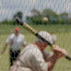 Diane-Burgett-Rippavilla-Vintage-Baseball-outing-2
