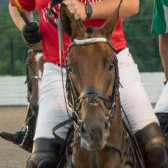 Betty-Cowart-Polo-match-at-Harlinsdale-Farm-Outing-1