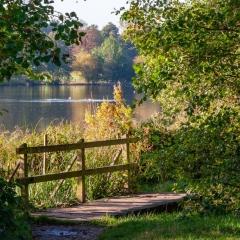 Essex Club - 3 View across Lake Weald Park