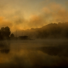 Marrowbone Lake Fog
