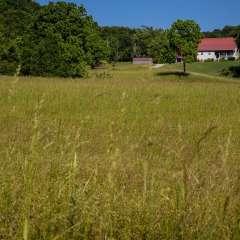 John-Mott-Song-1-Green-Green-Grass-of-Home